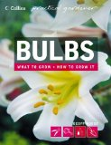 Book Cover Bulbs (Collins Practical Gardener)