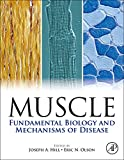 Book Cover Muscle 2-Volume Set: Fundamental Biology and Mechanisms of Disease