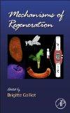 Book Cover Mechanisms of Regeneration, Volume 108 (Current Topics in Developmental Biology)