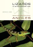 Book Cover Lizards in an Evolutionary Tree: Ecology and Adaptive Radiation of Anoles (Organisms and Environments)