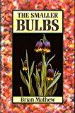 Book Cover The Smaller Bulbs