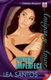 Book Cover Picture Imperfect (Amigas Y Amor)