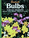 Book Cover Bulbs