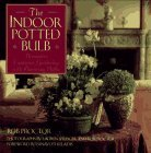 Book Cover The Indoor Potted Bulb ~ Decorative Container Gardening with Flowering Bulbs