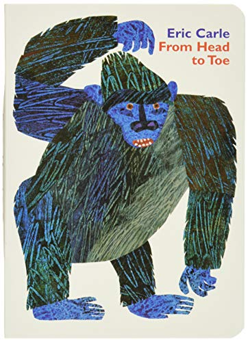Book Cover From Head to Toe Board Book