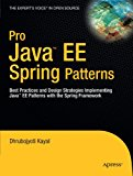 Book Cover Pro Java  EE Spring Patterns: Best Practices and Design Strategies Implementing Java EE Patterns with the Spring Framework (Expert's Voice in Open Source)