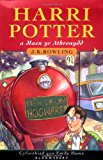 Book Cover Harri Potter a Maen yr Athronydd (Harry Potter and the Philosopher's Stone, Welsh Edition)
