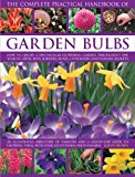 Book Cover The Complete Practical Handbook of Garden Bulbs: How to create a spectacular flowering garden throughout the year with bulbs, corms, tubers and rhizomes (Complete Practical Handbook)