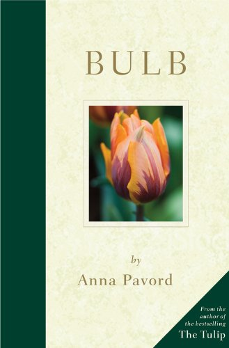 Book Cover Bulb