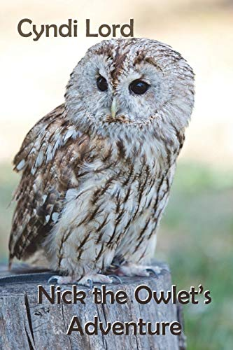 Nick the Owlet's Adventure