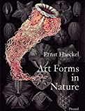 Book Cover Art Forms in Nature: The Prints of Ernst Haeckel