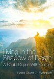 Book Cover Living in the Shadow of Death: A Rabbi Copes with Cancer