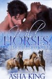 Book Cover Wild Horses: Cold Cold Winter (Stirling Falls)