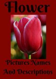 Book Cover Flower Pictures Names And Descriptions.: Flower pictures names and descriptions. flower care, annual flowers, bulb flowers, orchids flowers, perennials flowers, roses, wild flowers, organtic flowers.
